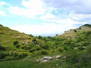 panorama-Capranica-Prenestina
