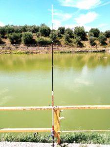 Pescare in provincia di Roma, le Mole Vecchie